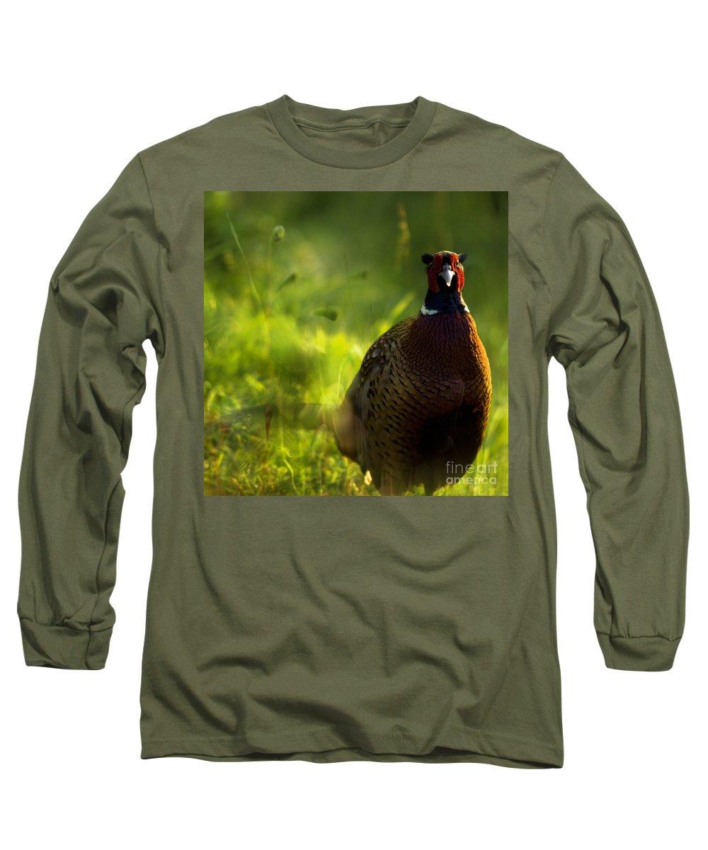 Bird Long Sleeve T-Shirt featuring the photograph Mr Pheasant by Angel Ciesniarska
