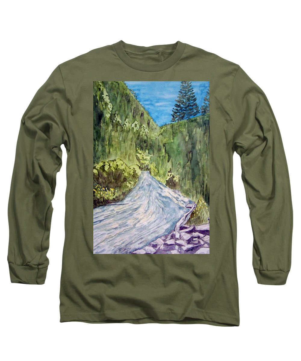 New Mexico Art Long Sleeve T-Shirt featuring the painting New Mexico Canyon Impression by Larry Wright