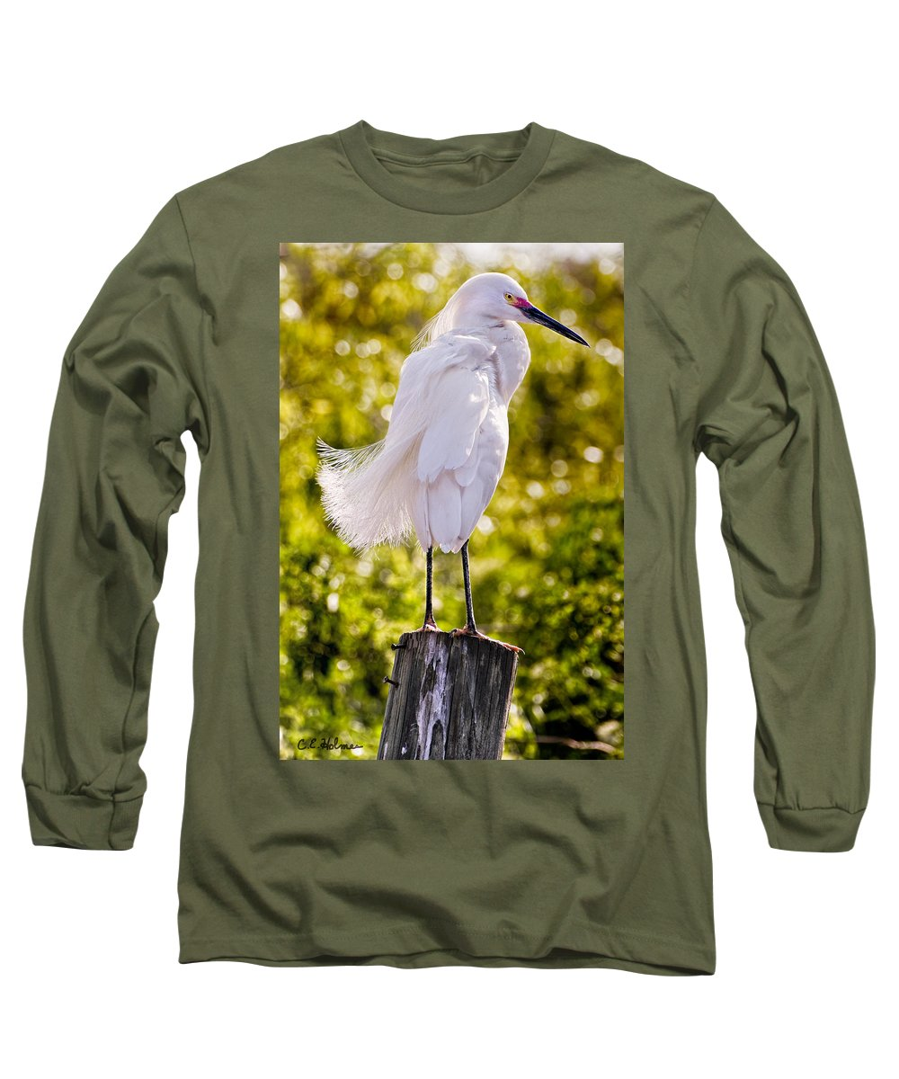 snowy Egret Long Sleeve T-Shirt featuring the photograph On Watch by Christopher Holmes