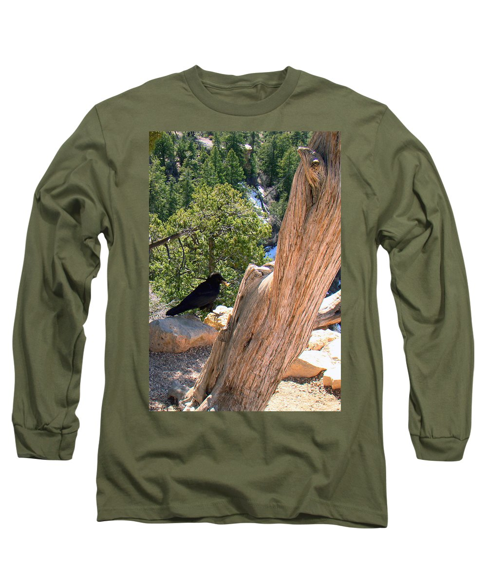 Grand Canyon Long Sleeve T-Shirt featuring the photograph Petrified Raven At Grand Canyon by Merja Waters
