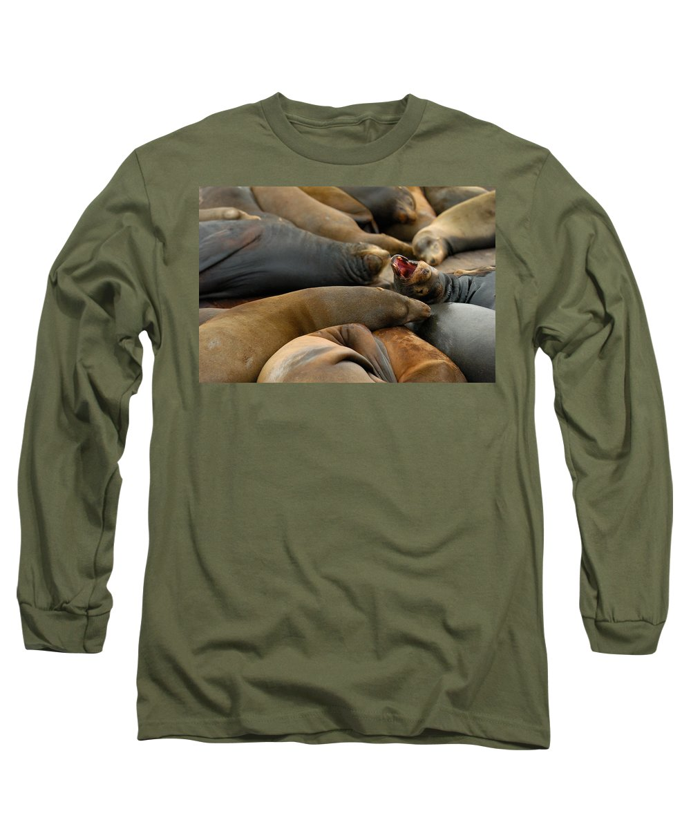 Sea Lions Pier 39 San Francisco Animal Photography Long Sleeve T-Shirt featuring the photograph Sea Lions At Pier 39 San Francisco by Sebastian Musial