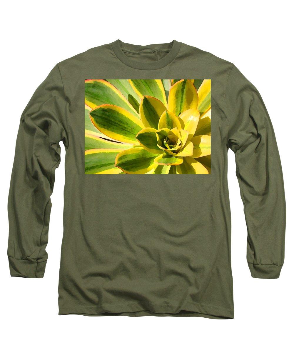 Landscape Long Sleeve T-Shirt featuring the photograph Sunburst Succulent Close-up 2 by Amy Vangsgard