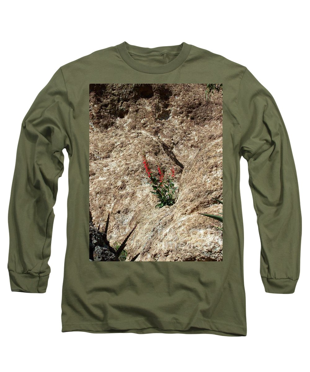 Wildflowers; Flowers Long Sleeve T-Shirt featuring the photograph Tenacity by Kathy McClure