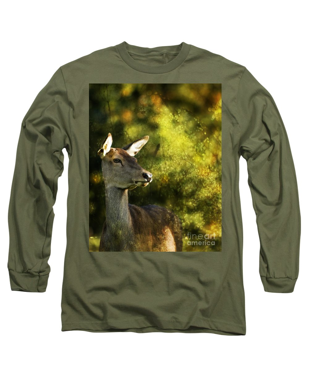 Deer Long Sleeve T-Shirt featuring the photograph The Deer by Angel Ciesniarska