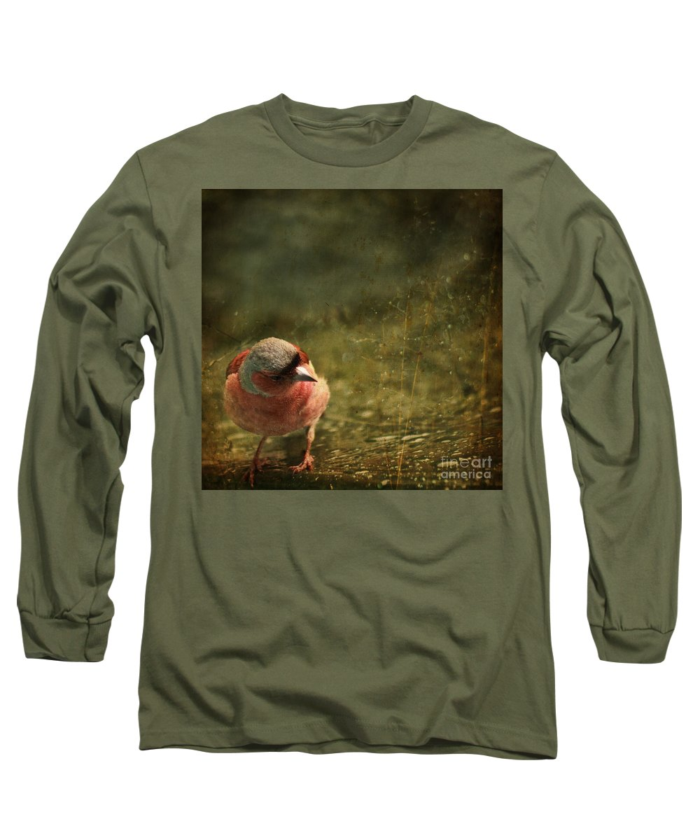 Chaffinch Long Sleeve T-Shirt featuring the photograph The Sad Chaffinch by Angel Ciesniarska