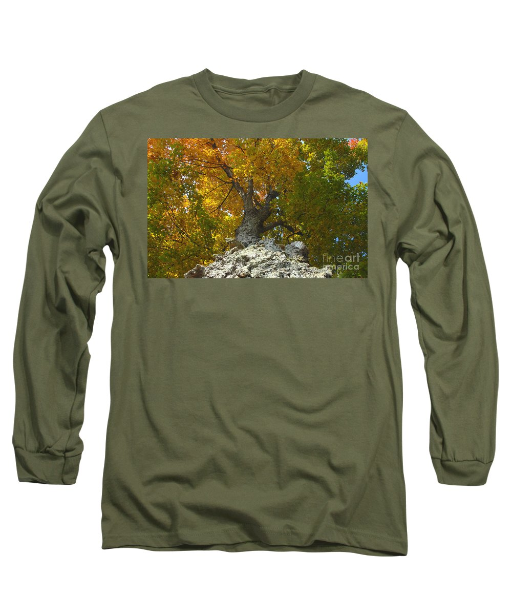 Fall Long Sleeve T-Shirt featuring the photograph Turning Colors by David Lee Thompson