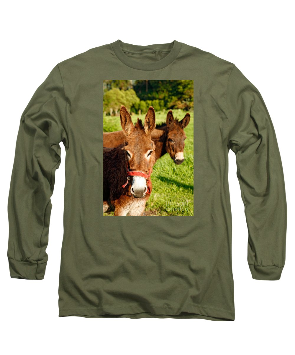 Animals Long Sleeve T-Shirt featuring the photograph Two Donkeys by Gaspar Avila