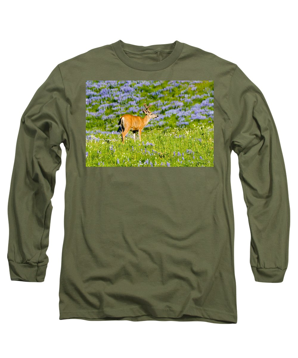 Deer Long Sleeve T-Shirt featuring the photograph Velvet On Lupine by Mike Dawson
