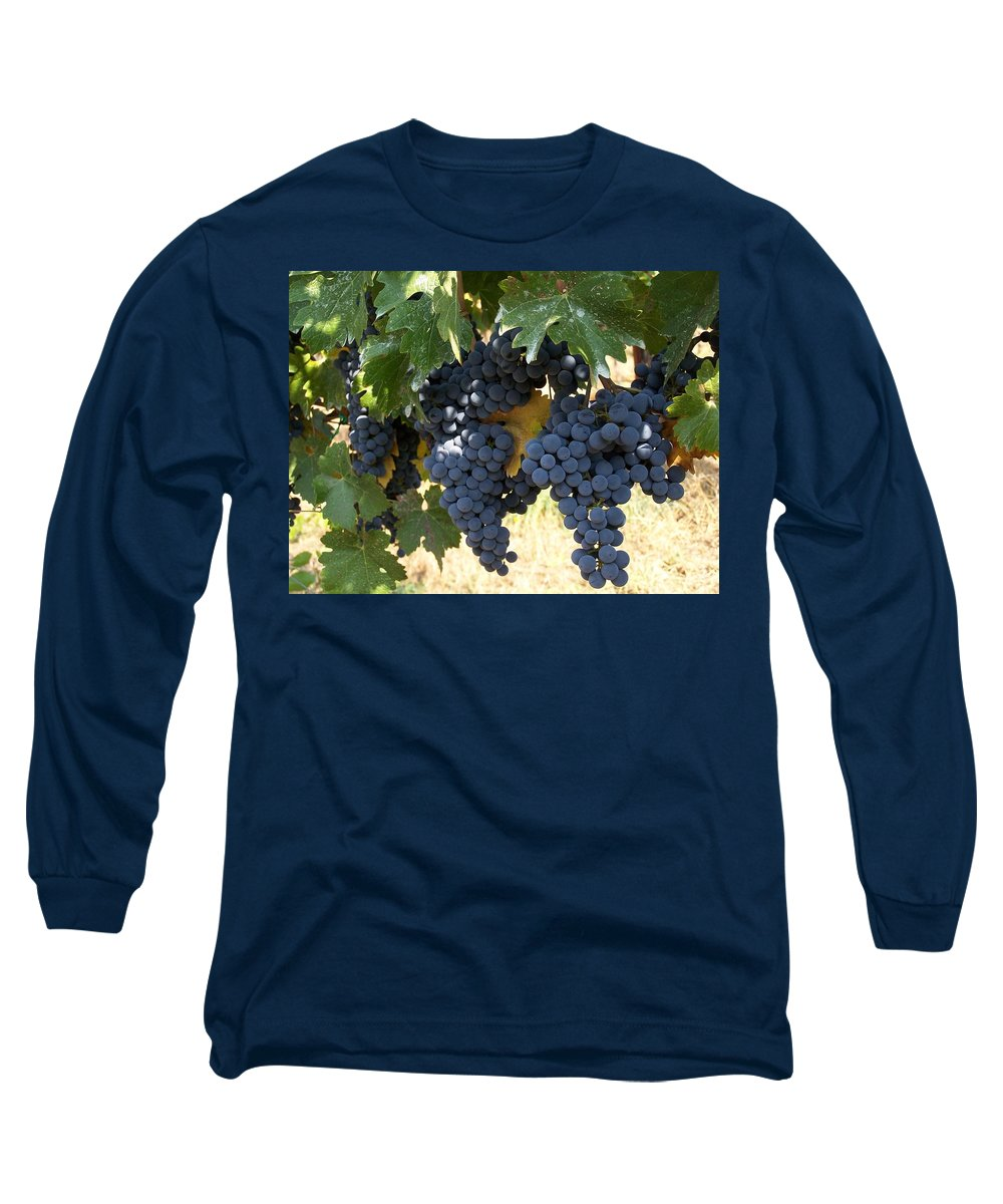 Grapes Long Sleeve T-Shirt featuring the photograph Harvest Time by Gale Cochran-Smith