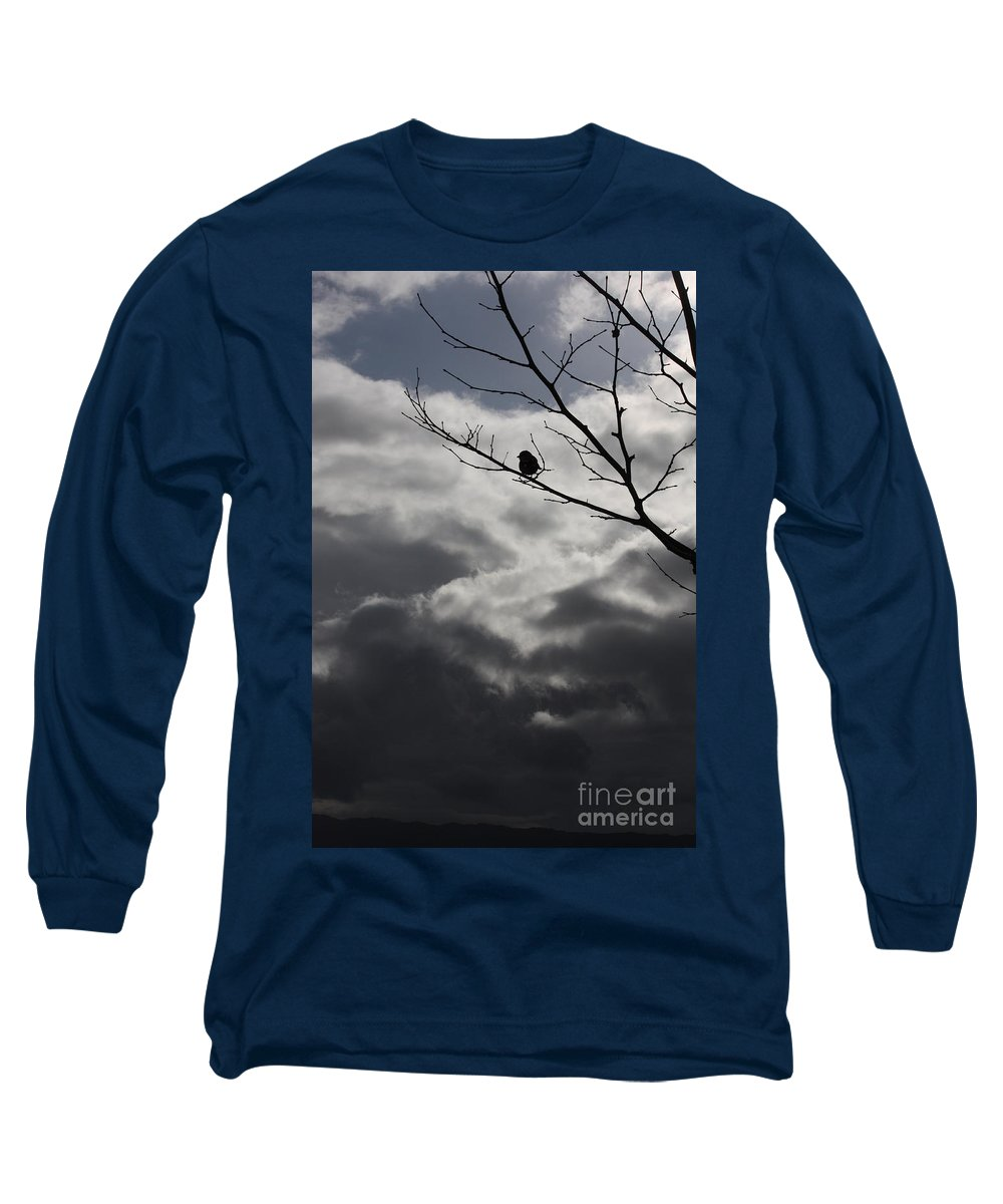 Storm Long Sleeve T-Shirt featuring the photograph Keeping Above The Storm by Carol Groenen