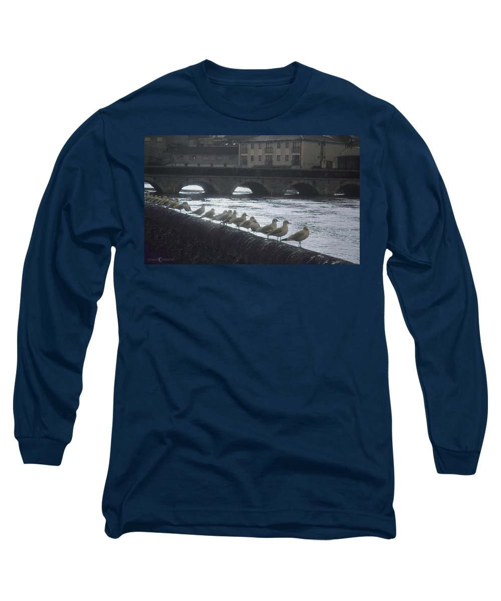 Birds Long Sleeve T-Shirt featuring the photograph Line Of Birds by Tim Nyberg