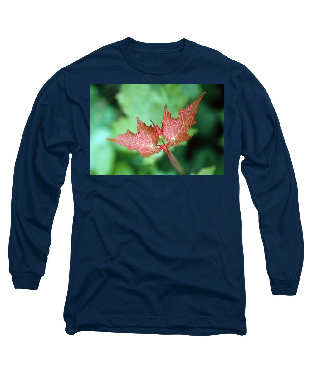 Maple Leaf Long Sleeve T-Shirt featuring the photograph Maple Red And Green by Laurie Paci