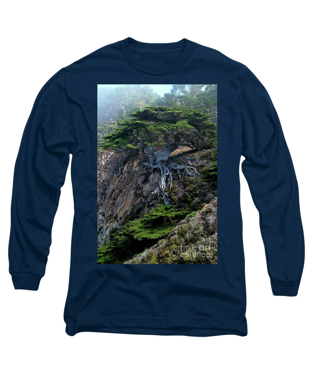 Landscape Long Sleeve T-Shirt featuring the photograph Point Lobos Veteran Cypress Tree by Charlene Mitchell