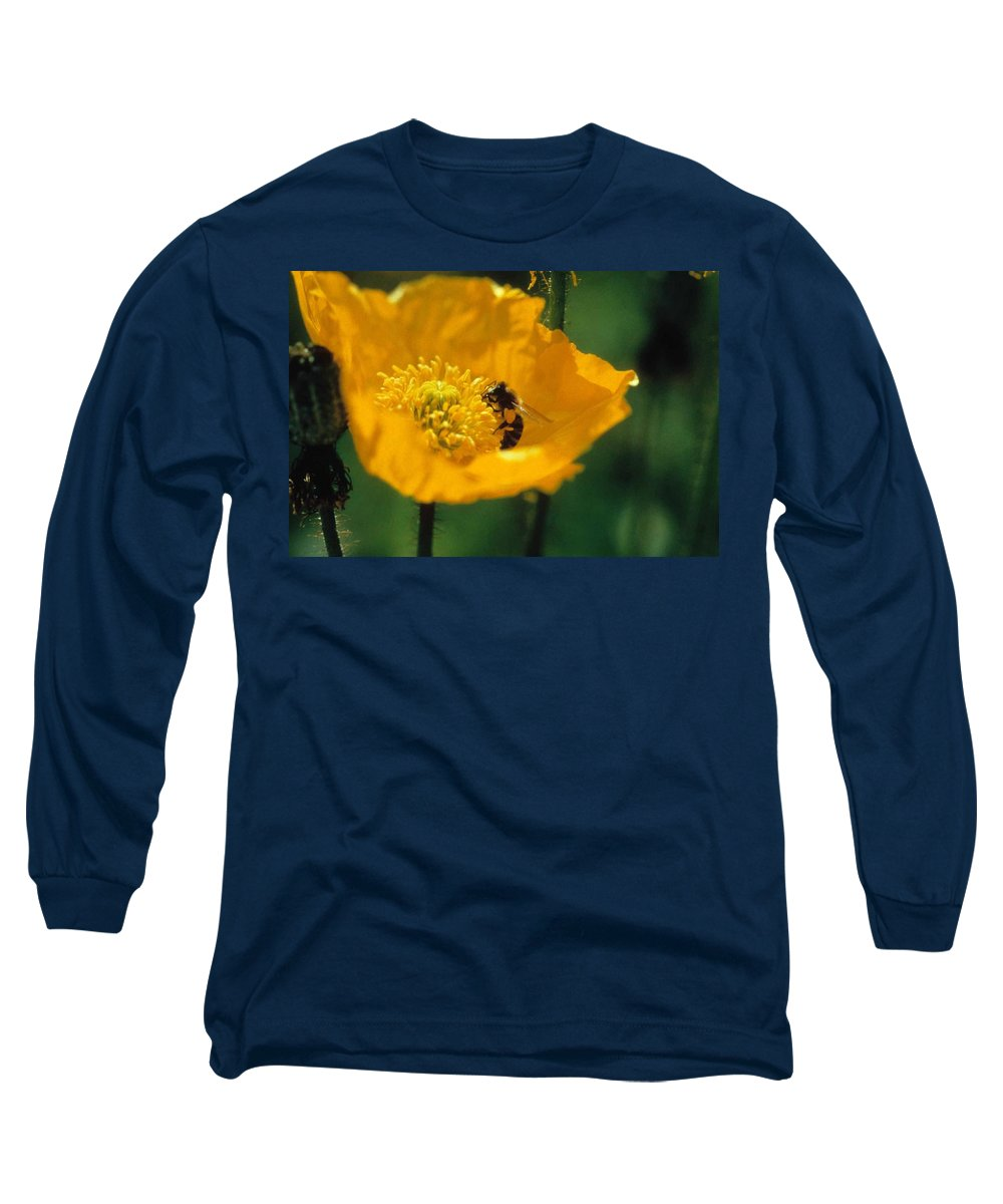 California Poppy Long Sleeve T-Shirt featuring the photograph Poppy With Bee Friend by Laurie Paci
