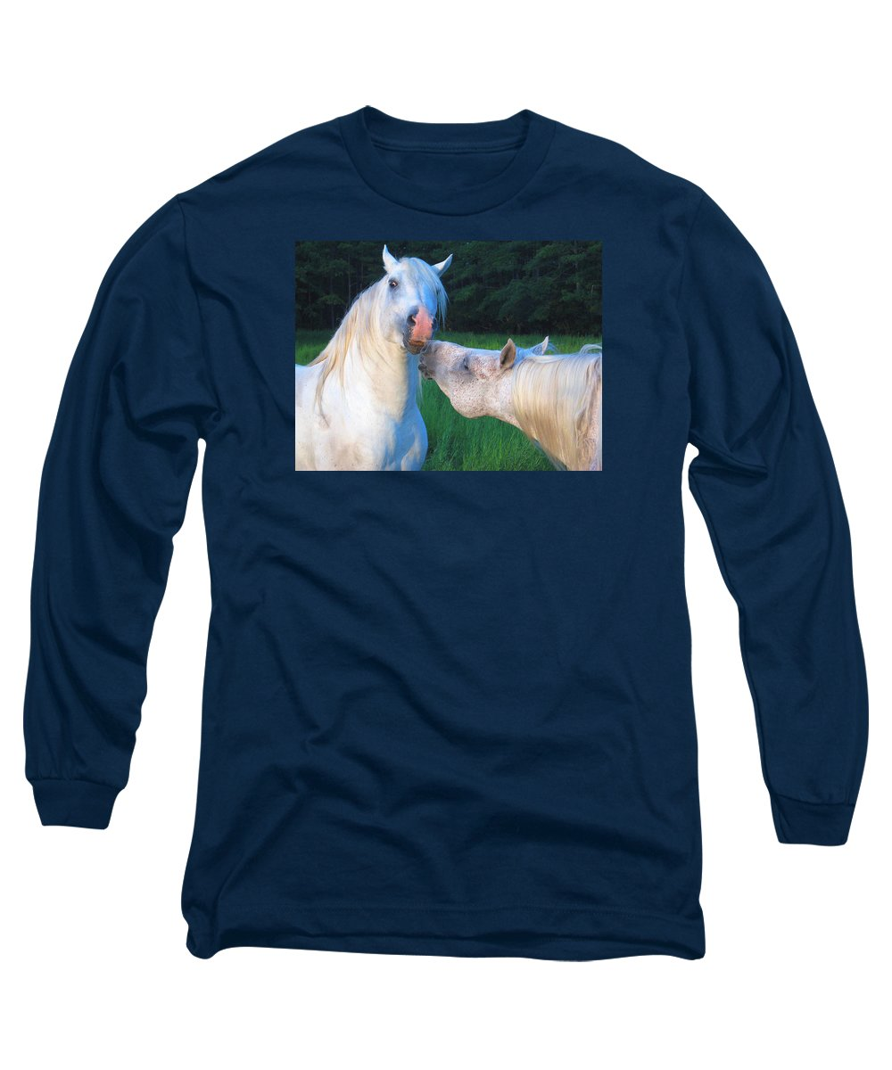 Stallions Long Sleeve T-Shirt featuring the photograph The Challange Begins by Dawn Johansen