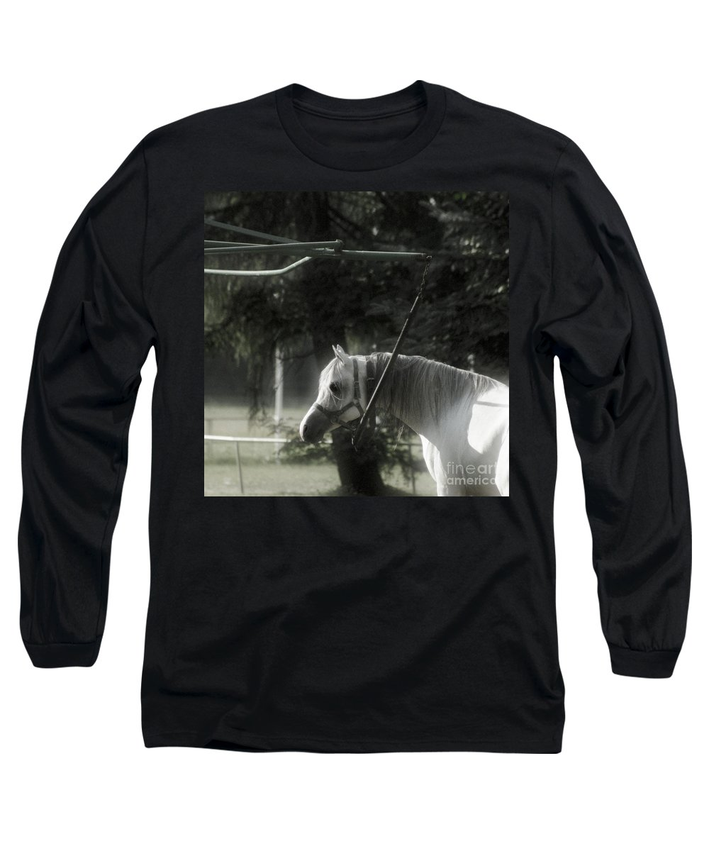 Horse Long Sleeve T-Shirt featuring the photograph In The Captivity by Angel Ciesniarska