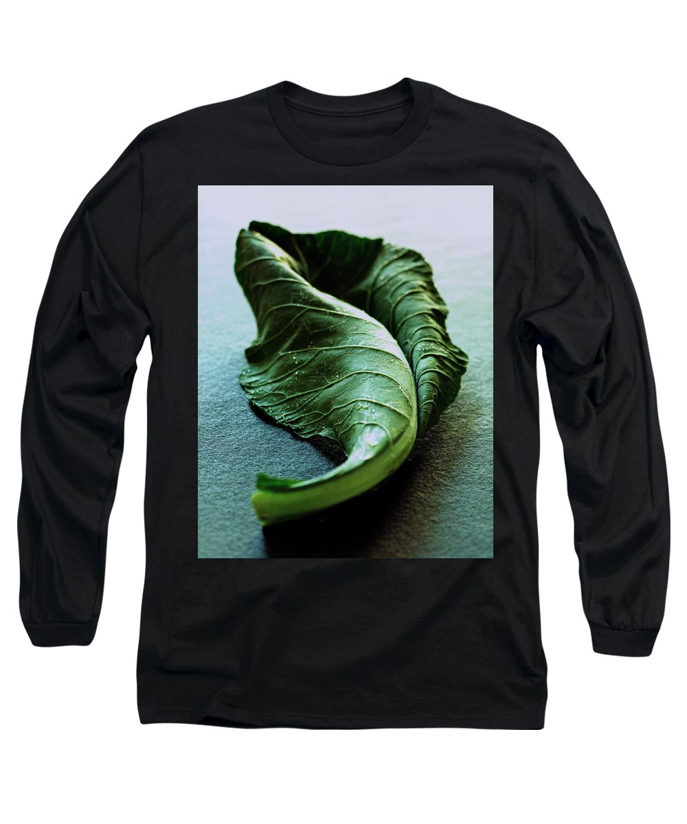 Nobody Long Sleeve T-Shirt featuring the photograph A Collard Leaf by Romulo Yanes