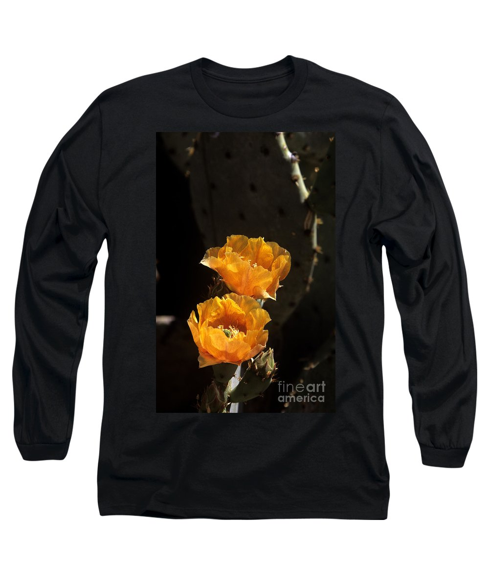 Cactus Long Sleeve T-Shirt featuring the photograph Apricot Blossoms by Kathy McClure