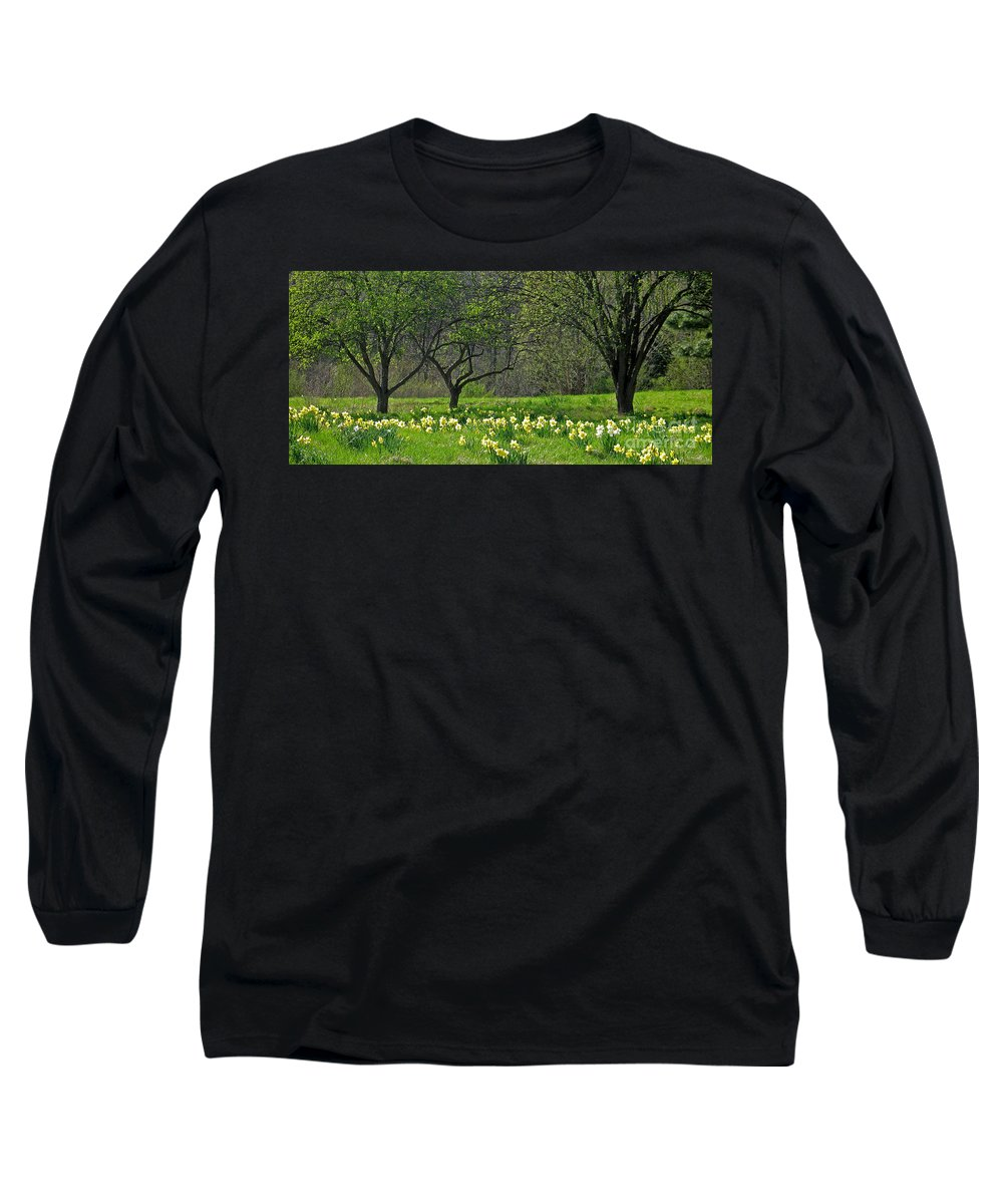 Spring Long Sleeve T-Shirt featuring the photograph Daffodil Meadow by Ann Horn