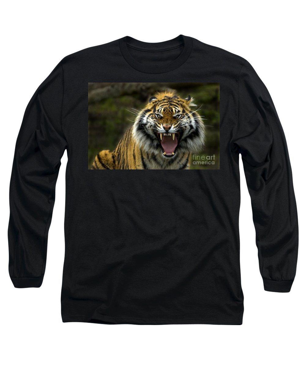 Tiger Long Sleeve T-Shirt featuring the photograph Eyes Of The Tiger by Mike Dawson