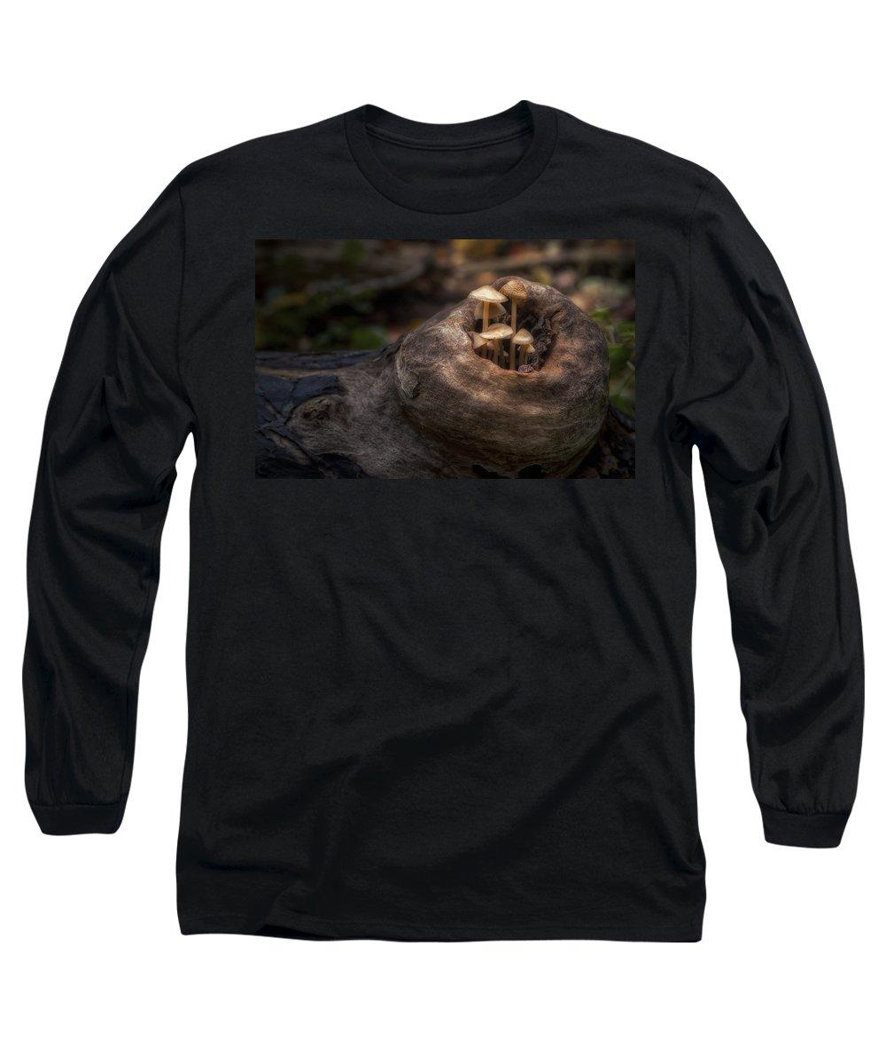Mushroom Long Sleeve T-Shirt featuring the photograph Fairie Garden by Scott Norris