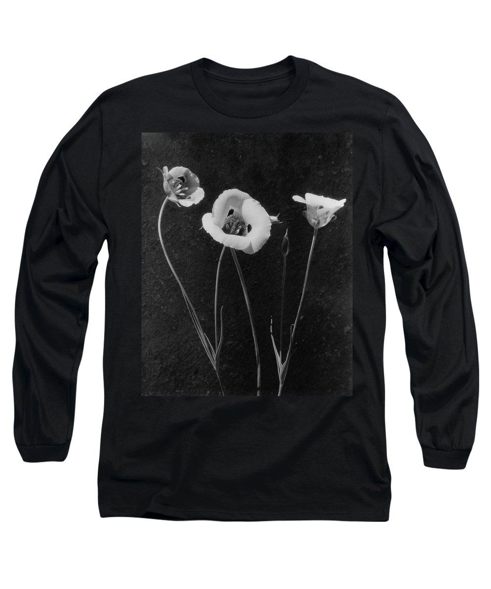 Exterior Long Sleeve T-Shirt featuring the photograph Flowers In Louise Beebe Wilder's Garden by Harry G. Healy