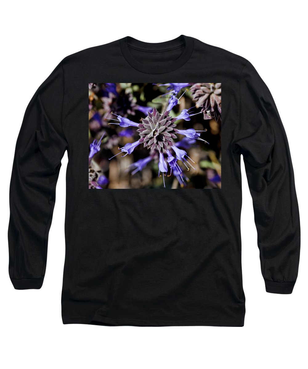Fuzzy Long Sleeve T-Shirt featuring the photograph Fuzzy Purple 3 by Kelley King