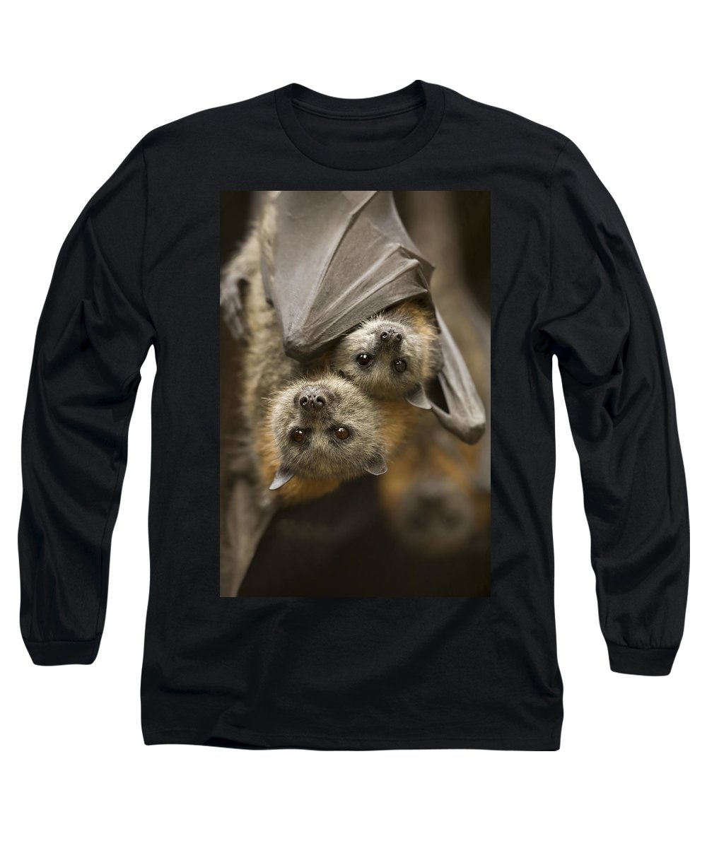 Bats Long Sleeve T-Shirt featuring the photograph Hang In There by Mike Dawson