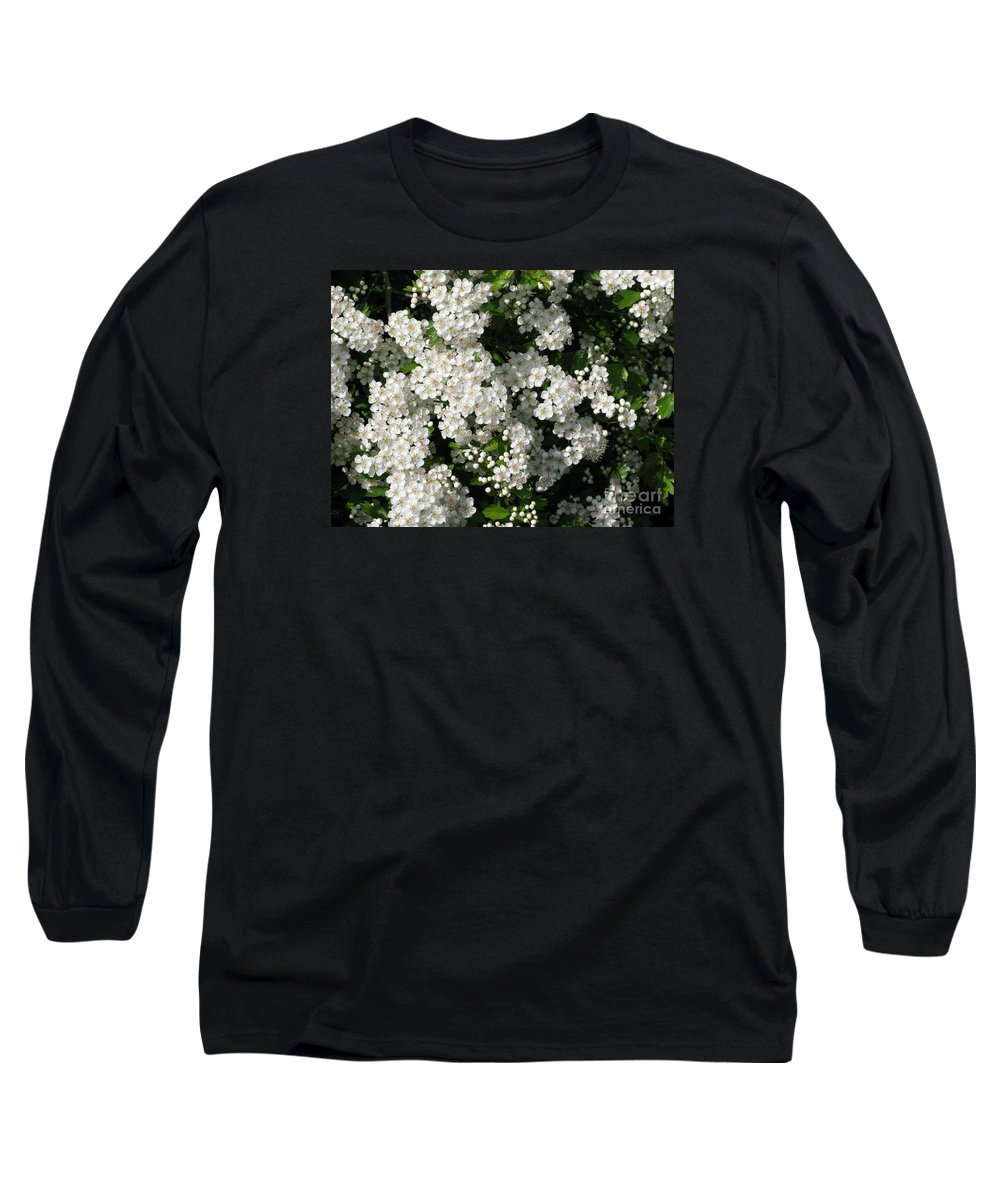 Hawthorn Long Sleeve T-Shirt featuring the photograph Hawthorn In Bloom by Ann Horn