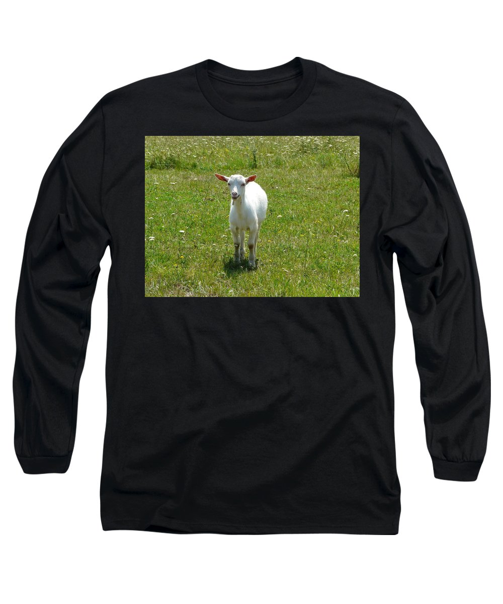 Kid Long Sleeve T-Shirt featuring the photograph Kid Goat by Valerie Ornstein