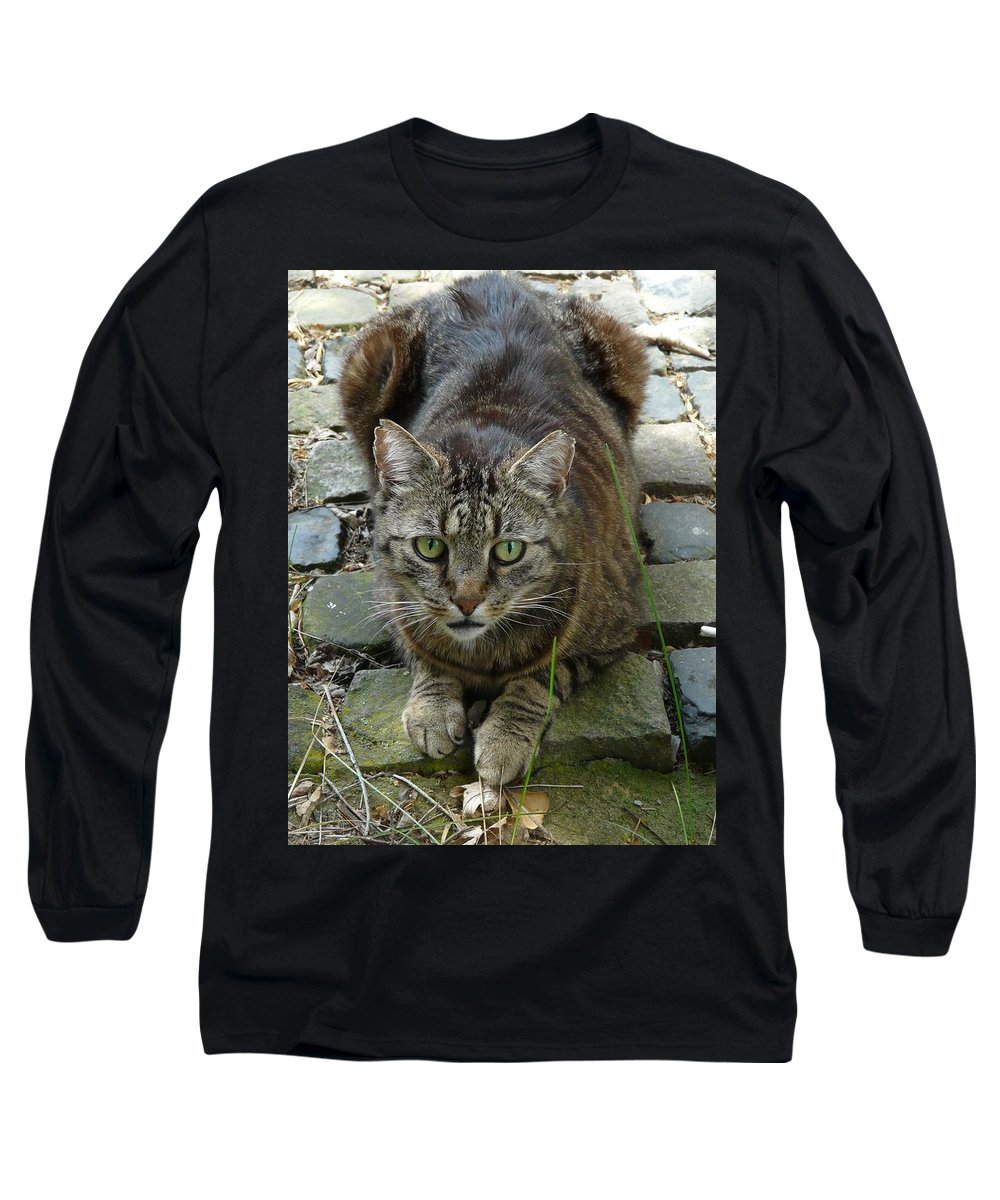 Cat Long Sleeve T-Shirt featuring the photograph Marco by Valerie Ornstein