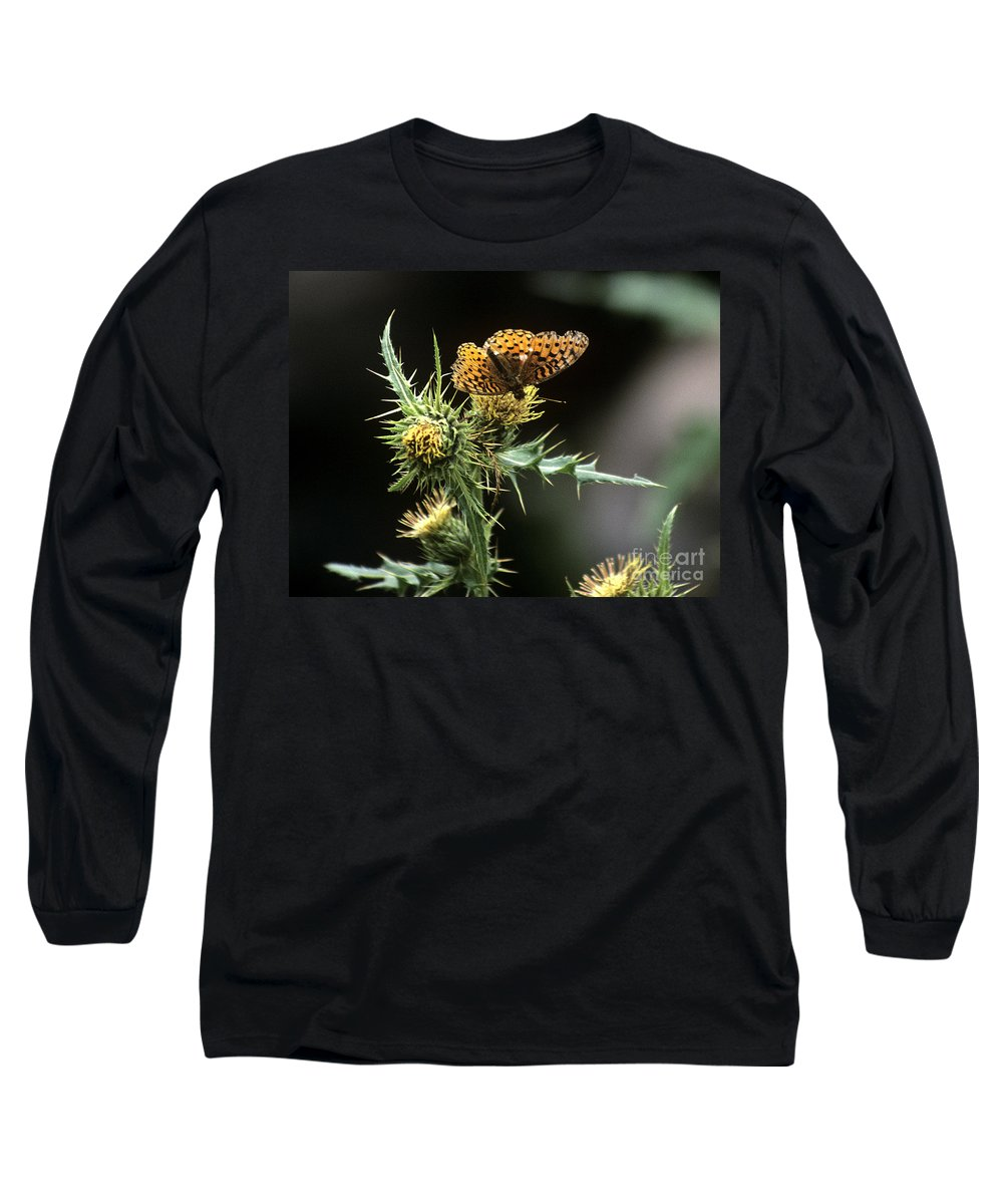 Butterfly Long Sleeve T-Shirt featuring the photograph Monarch On Thistle by Kathy McClure