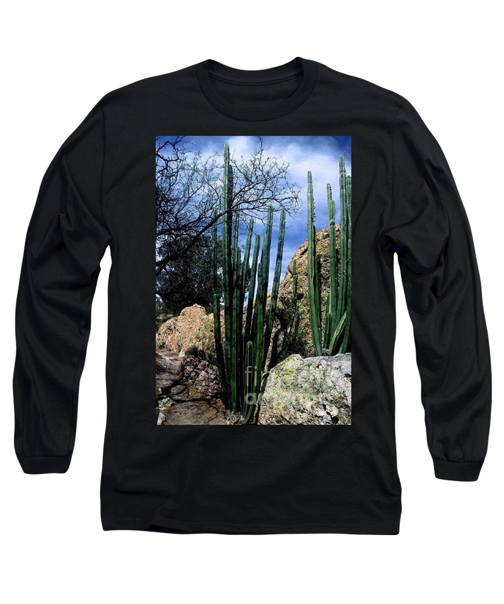 Cactus Long Sleeve T-Shirt featuring the photograph Organ Pipe by Kathy McClure