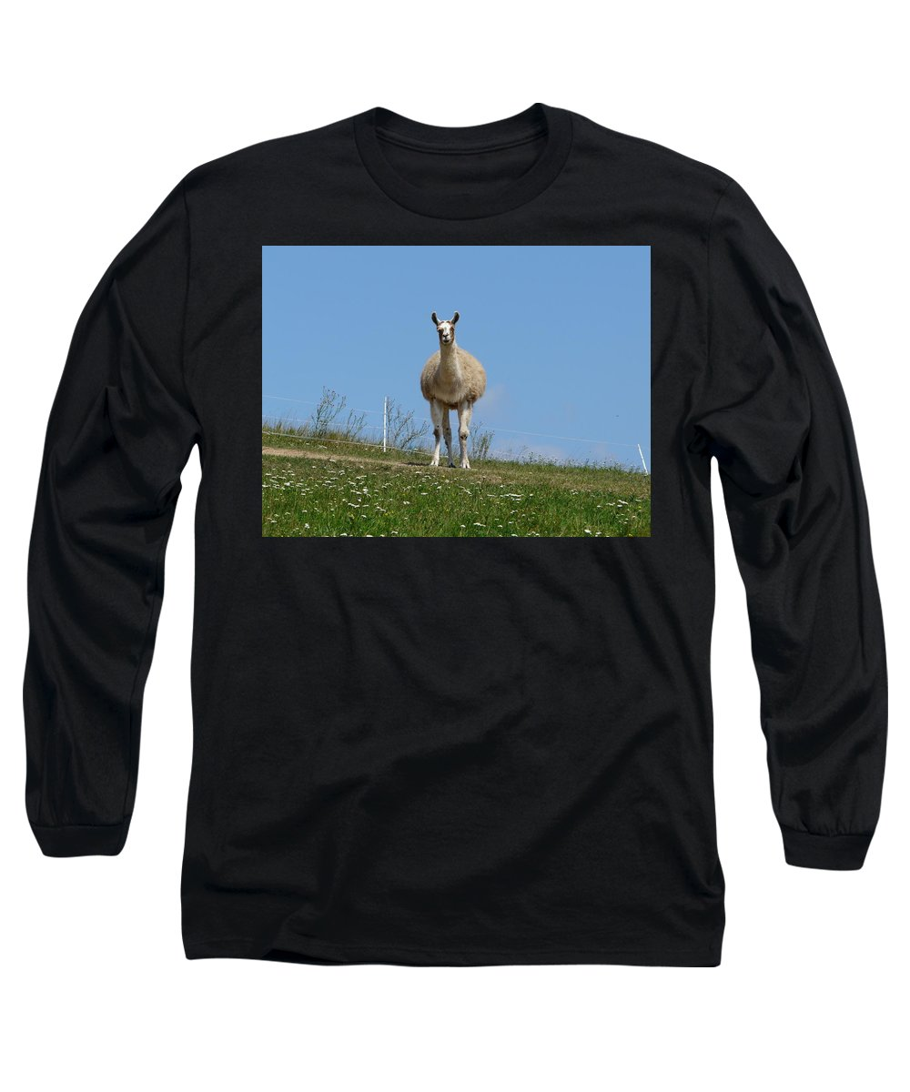 Lama Long Sleeve T-Shirt featuring the photograph Sentinel by Valerie Ornstein