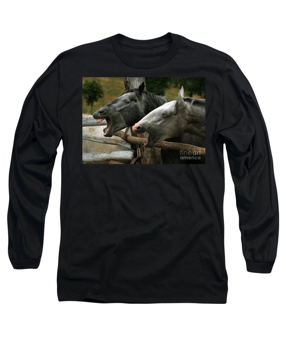 Horses Long Sleeve T-Shirt featuring the photograph the double Yawn by Angel Ciesniarska
