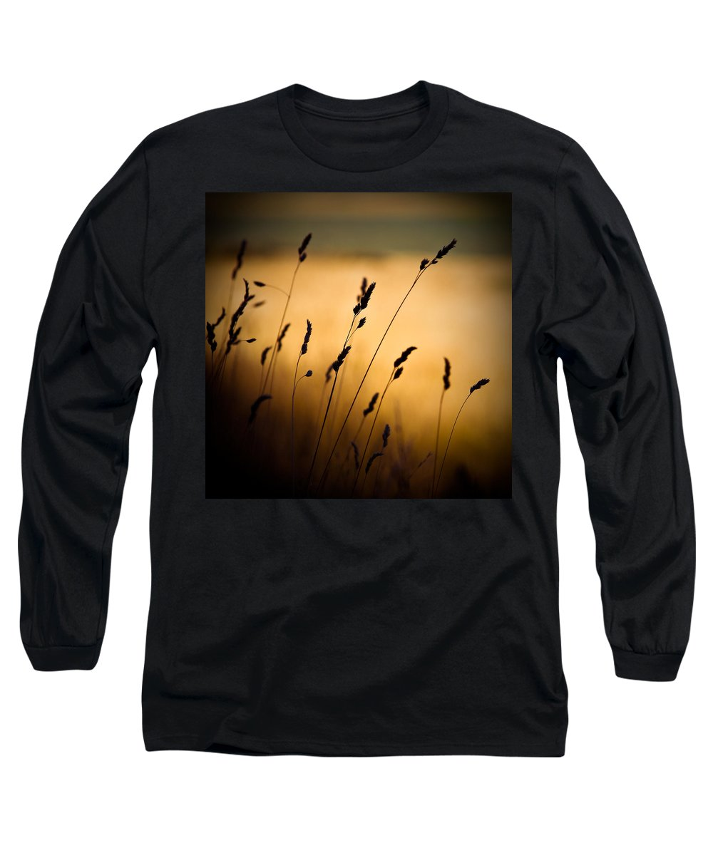 Filed At Sunset Long Sleeve T-Shirt featuring the photograph The Field by Dave Bowman