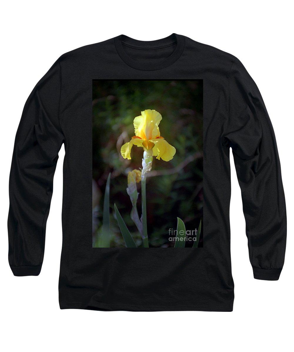 Iris Long Sleeve T-Shirt featuring the photograph Yellow Iris by Kathy McClure