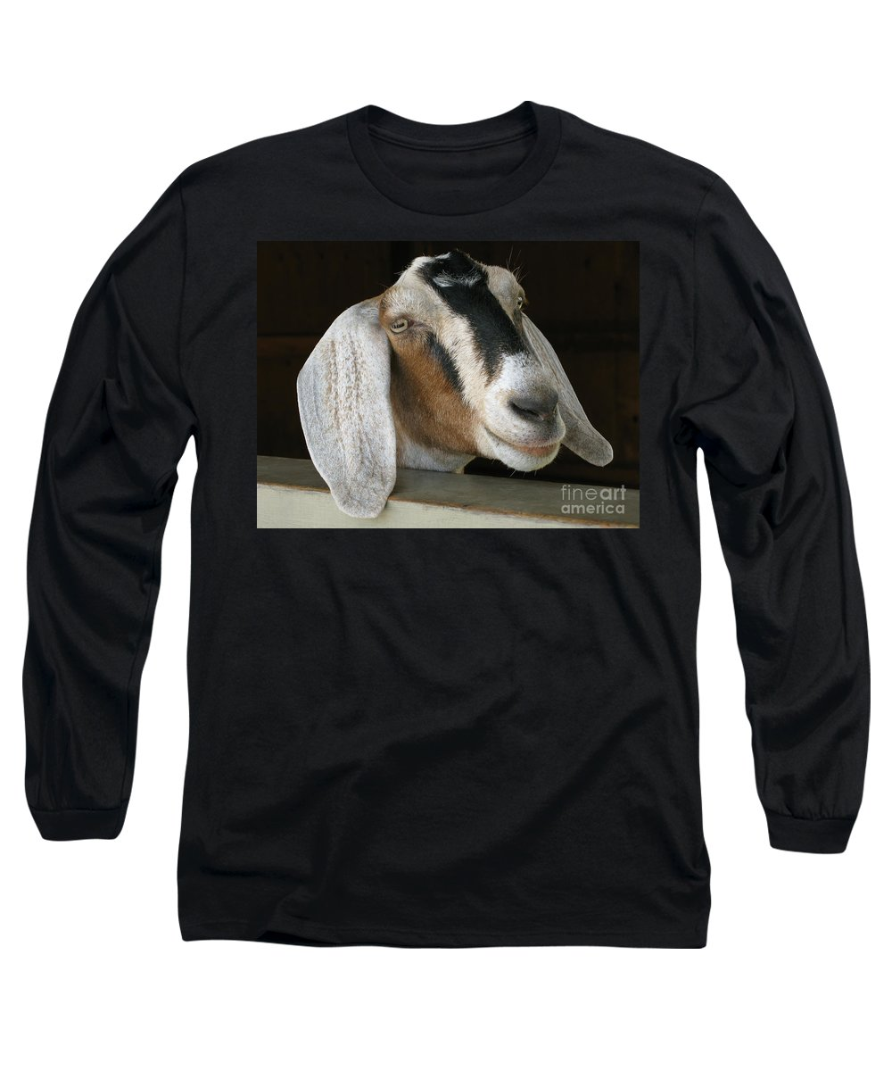 Goat Long Sleeve T-Shirt featuring the photograph Photogenic Goat by Ann Horn
