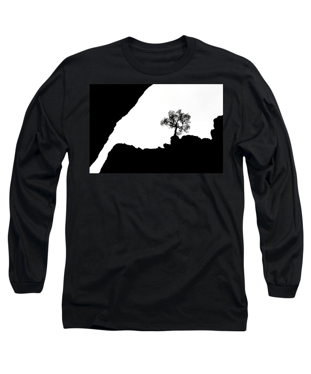 Tree Long Sleeve T-Shirt featuring the photograph Looking Up by Marilyn Hunt