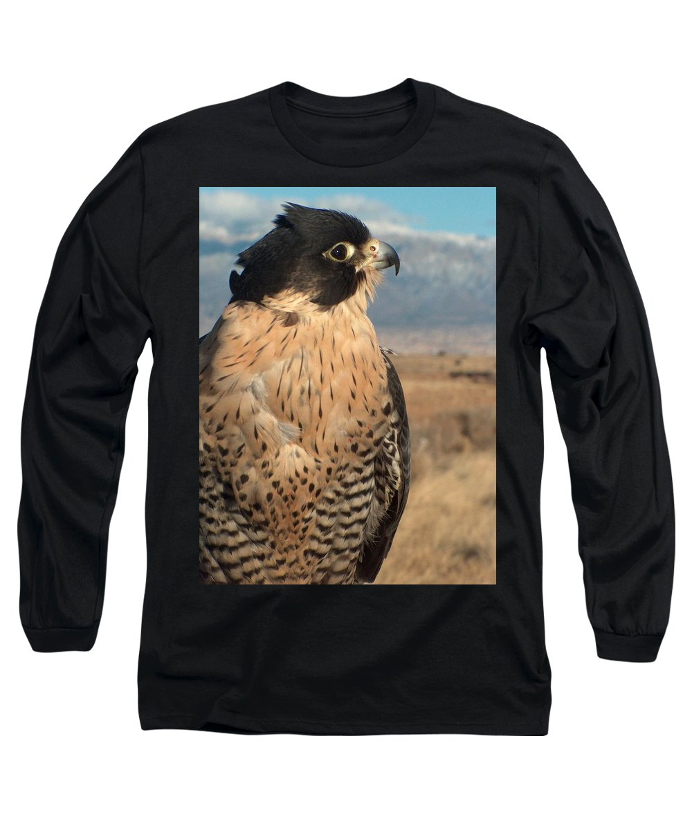 Peregrine Falcon Long Sleeve T-Shirt featuring the photograph Peregrine Falcon by Tim McCarthy