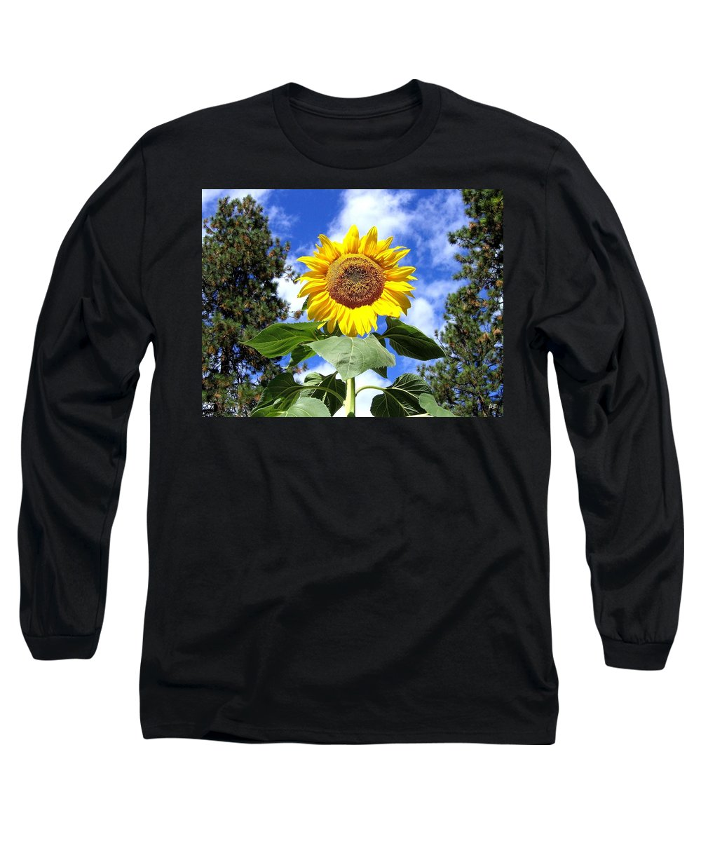 Sunflower Long Sleeve T-Shirt featuring the photograph Tall And Sunny by Will Borden