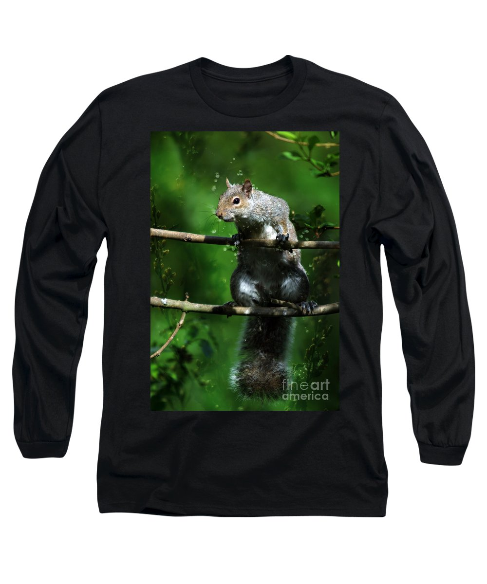 Squirrel Long Sleeve T-Shirt featuring the photograph The Squirrel From Fairyland by Angel Ciesniarska