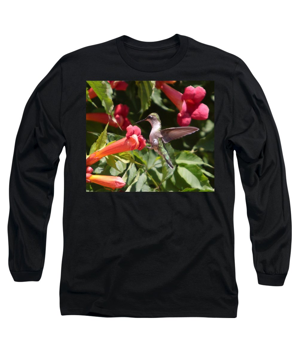 Humming Bird Long Sleeve T-Shirt featuring the photograph A Sweet Tooth-2 by Robert Pearson