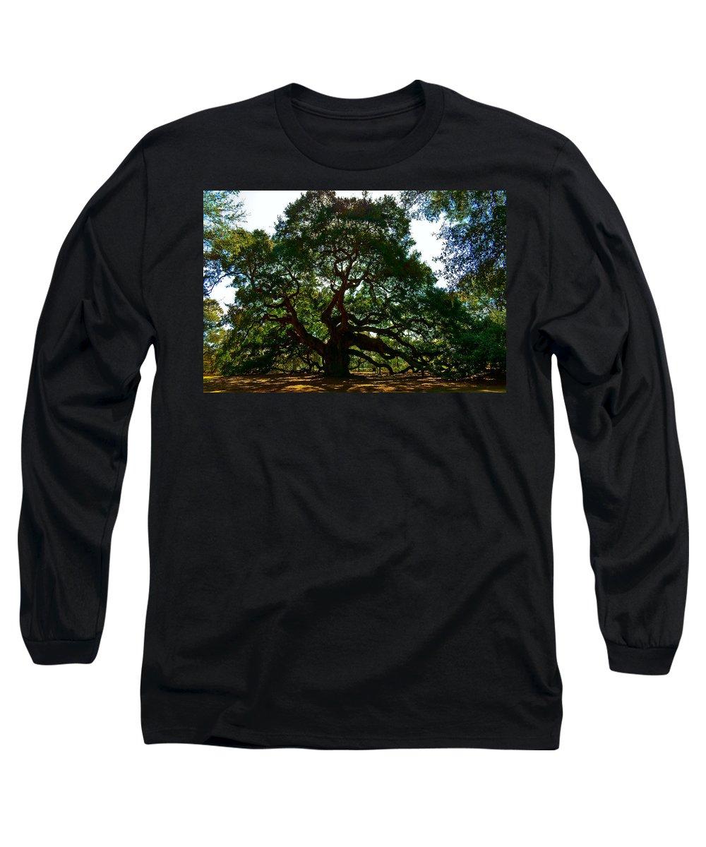 Tree Long Sleeve T-Shirt featuring the photograph Angel Oak Tree 2004 by Louis Dallara