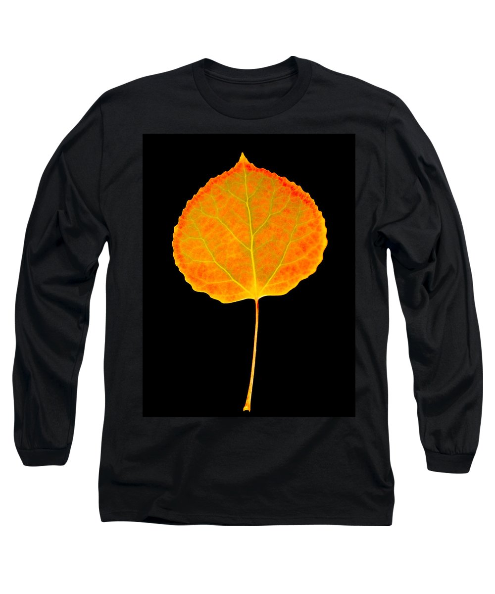 Leaf Long Sleeve T-Shirt featuring the photograph Aspen Leaf by Marilyn Hunt