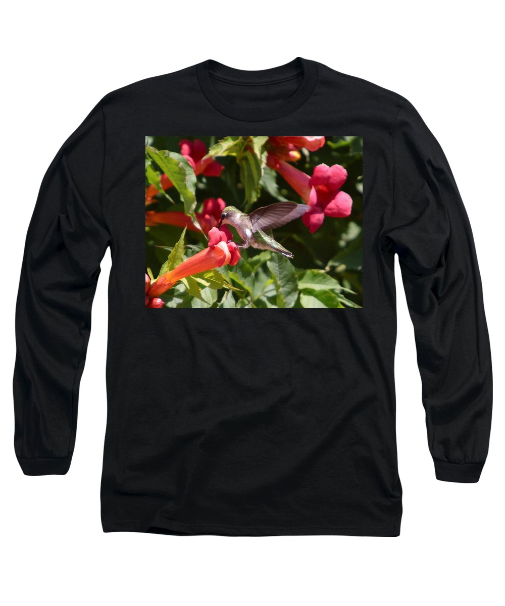 Humming Bird Long Sleeve T-Shirt featuring the photograph Asweet Tooth by Robert Pearson