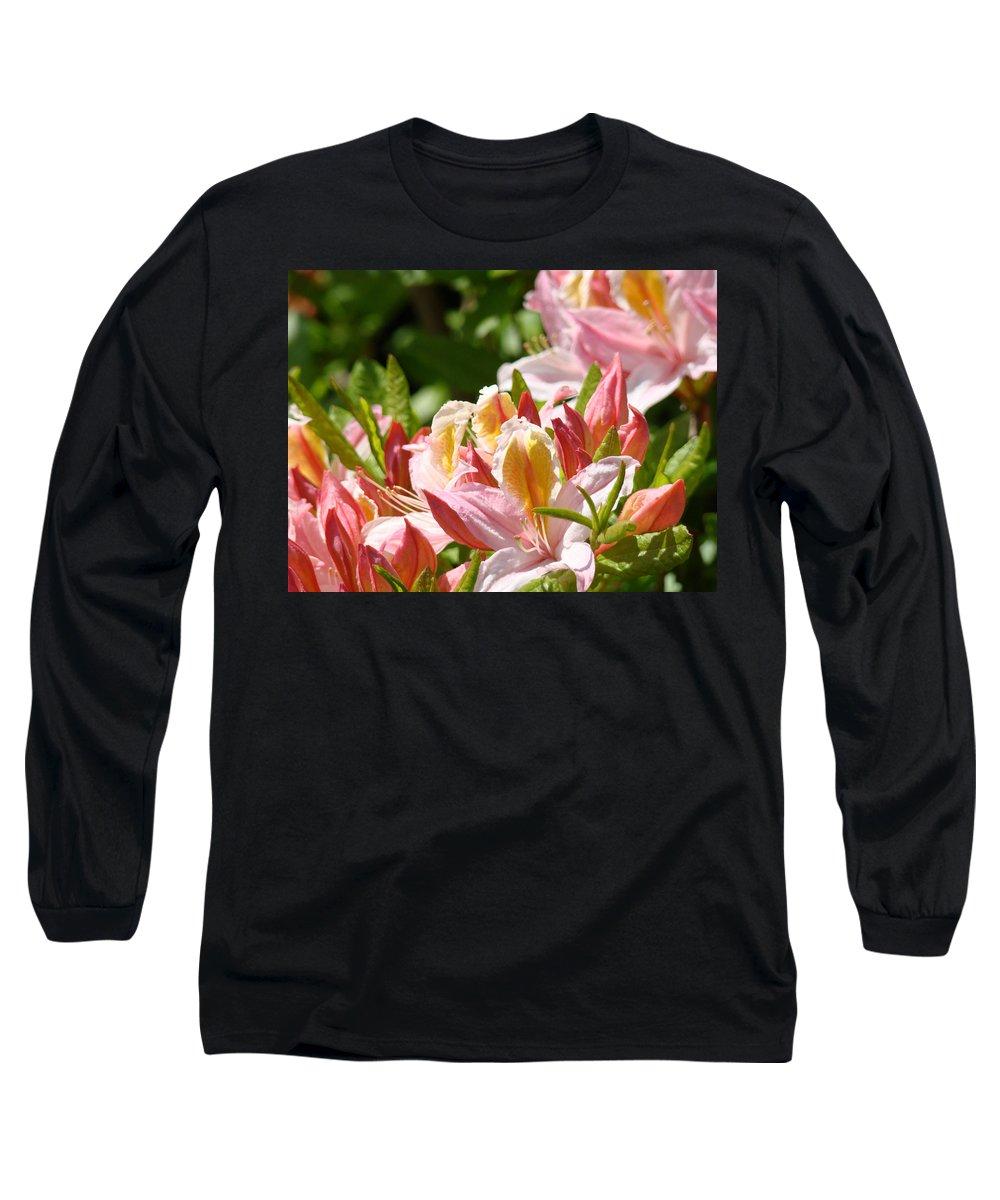�azaleas Artwork� Long Sleeve T-Shirt featuring the photograph Azaleas Pink Orange Yellow Azalea Flowers 6 Summer Flowers Art Prints Baslee Troutman by Baslee Troutman