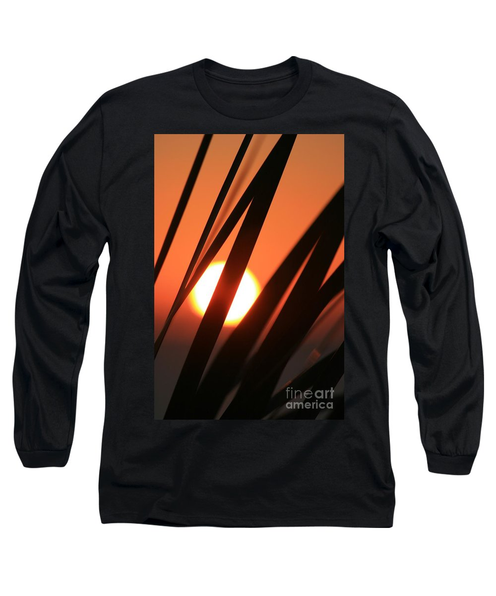 Sun Long Sleeve T-Shirt featuring the photograph Blazing Sunset And Grasses by Nadine Rippelmeyer