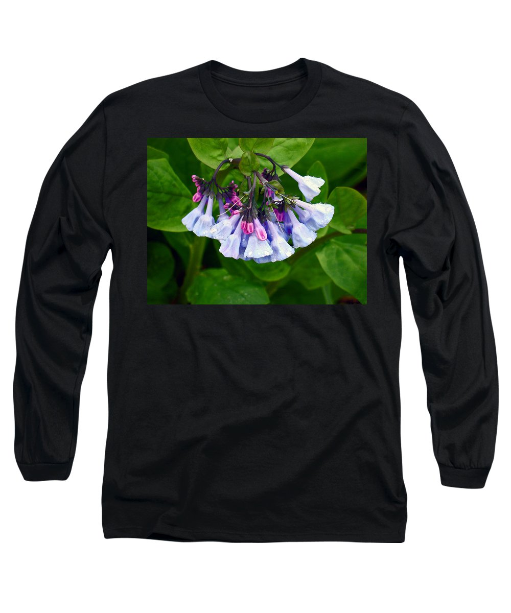 Native Landscape Long Sleeve T-Shirt featuring the photograph Blue Bells by Steve Karol