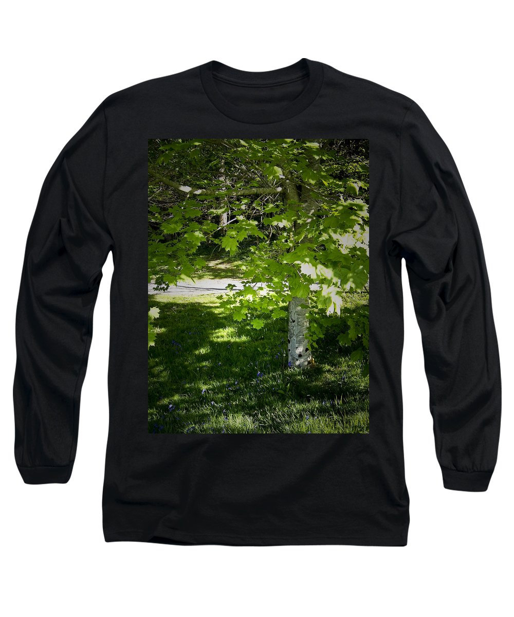 Irish Long Sleeve T-Shirt featuring the photograph Bluebells In Killarney National Park Ireland by Teresa Mucha